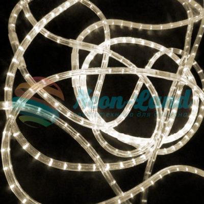 Светодиодный дюралайт Rich LED 13 мм