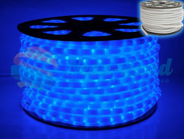 Светодиодный дюралайт Rich LED 2-х проводной