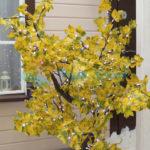 220V Желтый