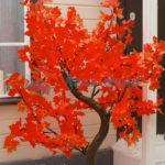 220V Красный