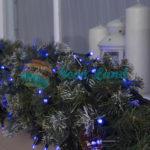 Н.Т. 3W LED(IP65-O)-100-220V